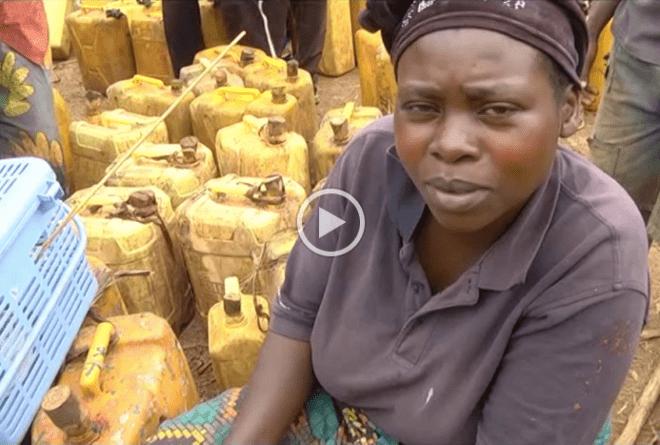 Vidéo : au marché de la bière